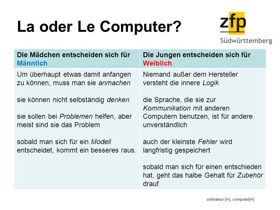 ordinateur [m], computer[m]